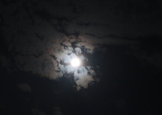 [原创]举头邀明月、低头拍蚊子