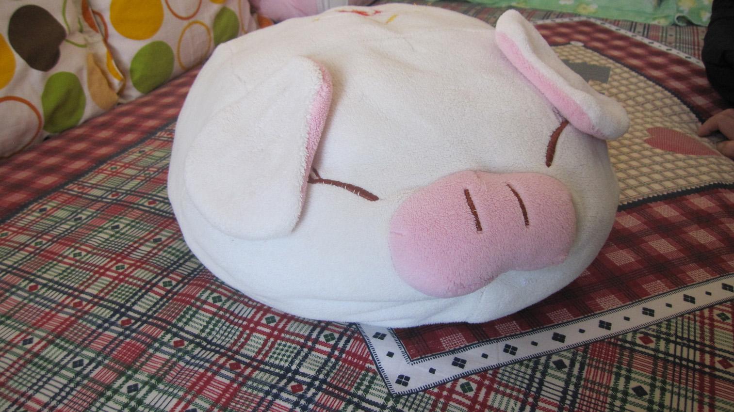 可爱的小懒猪
