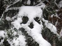 2011年冬丰都雪景(图)