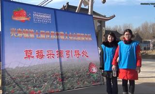 第七届世界草莓大会记实-志愿者服务队