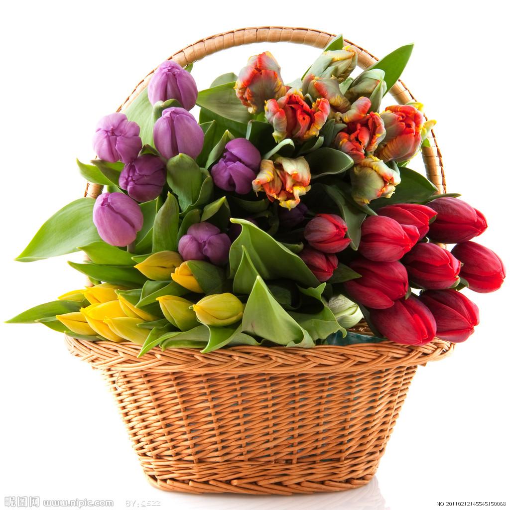 情人节,惠州鲜花价格涨了50%