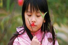 惠州红花湖桃梅园桃花初放喜迎春