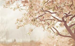 有爱相伴,再清贫也是温暖如春的,【让人感动】