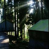 坪坝营的帐篷酒店