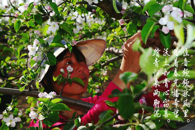 春之韵(解绍亮)