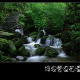 坪坝营的风景流花溪