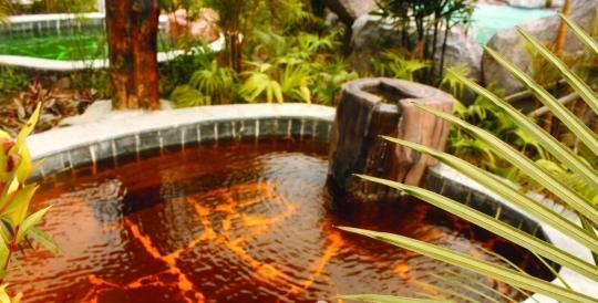 河源叶园温泉:客家特色药池(图)