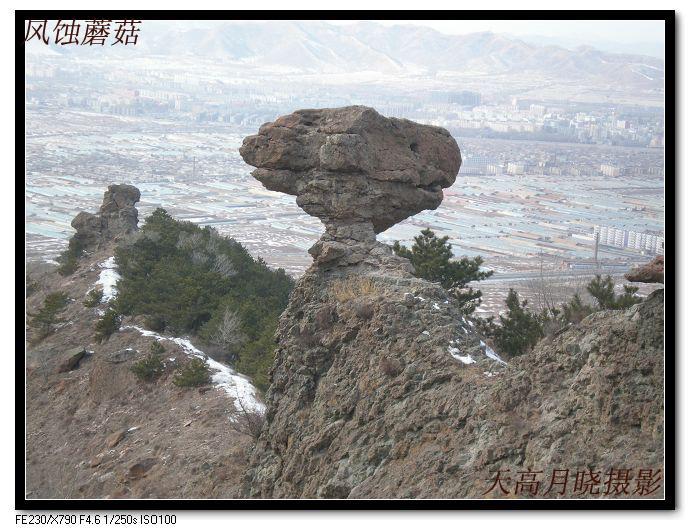 凌源蘑菇石