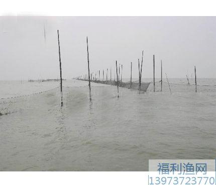 拦河养鱼网拦江网拦水库网