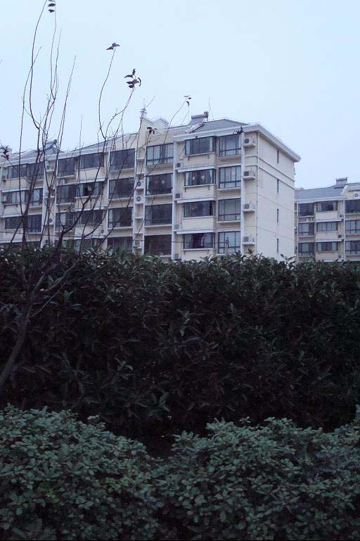 张江地铁房 1室户出售 产证满5年