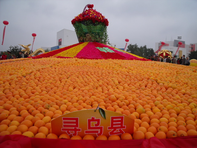 中国寻乌脐橙蜜桔之乡