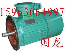 DSB(JDSB)输送机用隔爆型电机