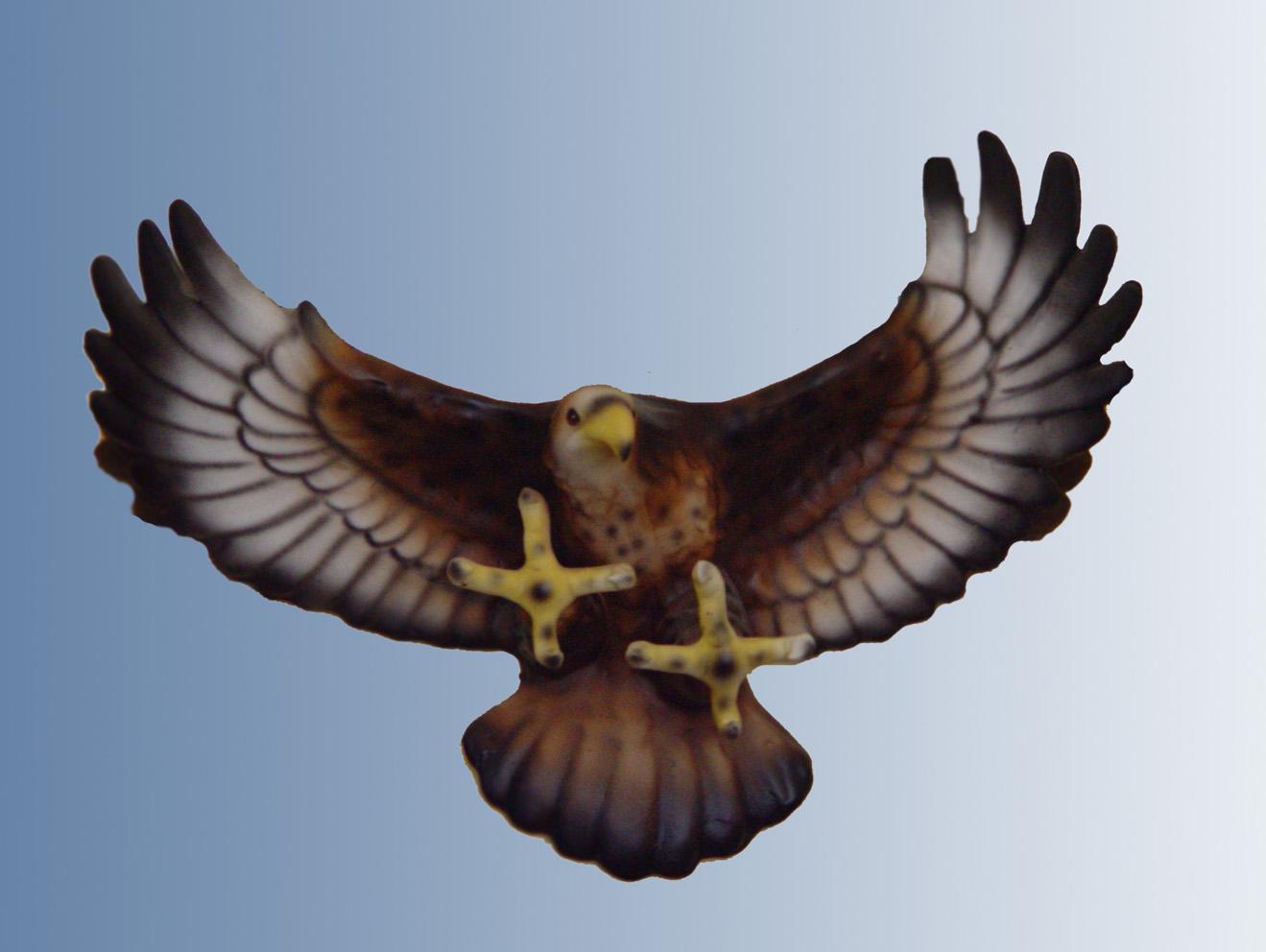 鸟正在飞卡通图片