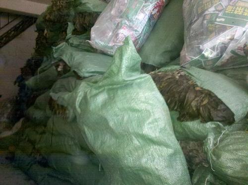 大量批发海带、紫菜等海产品