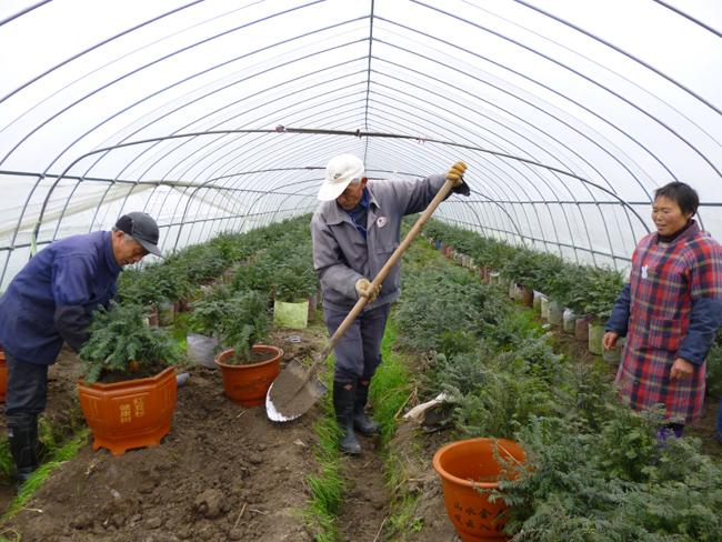 江山市创帆农业发展有限公司