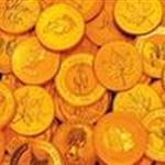 100城市币抽奖