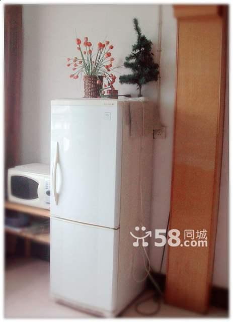 (转让)因工作调动,转新飞冰箱一台 - 550元
