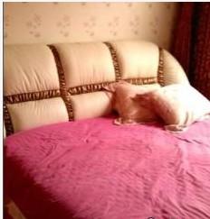 真皮白色1米8宽*2米长大床带高级床垫