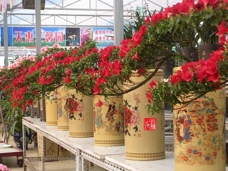 万佳园花卉市场