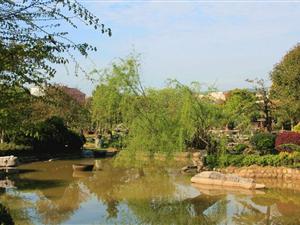 宁波元生园林开发有限公司