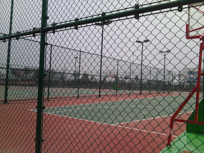 專業生產安裝體育場圍網,球場圍欄網,彈性鐵絲網