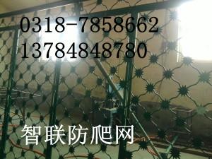 出售生產監獄防護網,鐵絲網,防爬網