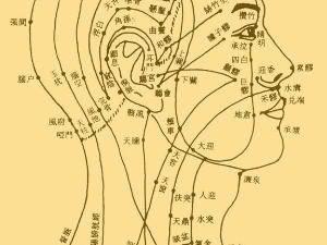 中医专家特效科