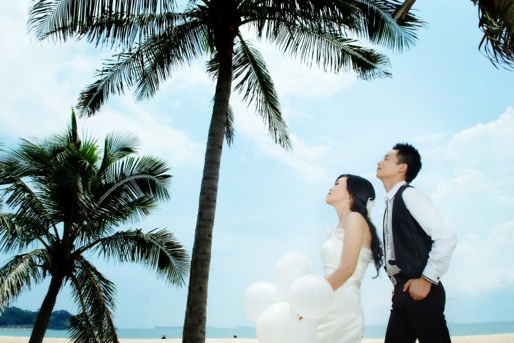 海边椰子树下的爱 婚纱照
