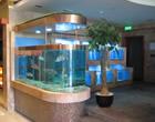 南通專業設計制作酒店海鮮池、超市賣場活鮮魚缸。