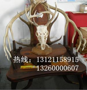 鹿角椅整套康熙款鹿角椅北京鹿角椅专卖鹿角椅