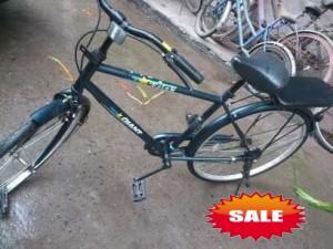 捷安特自行车 - 300元