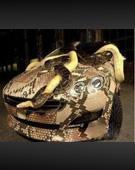 你见过这样的汽车吗?