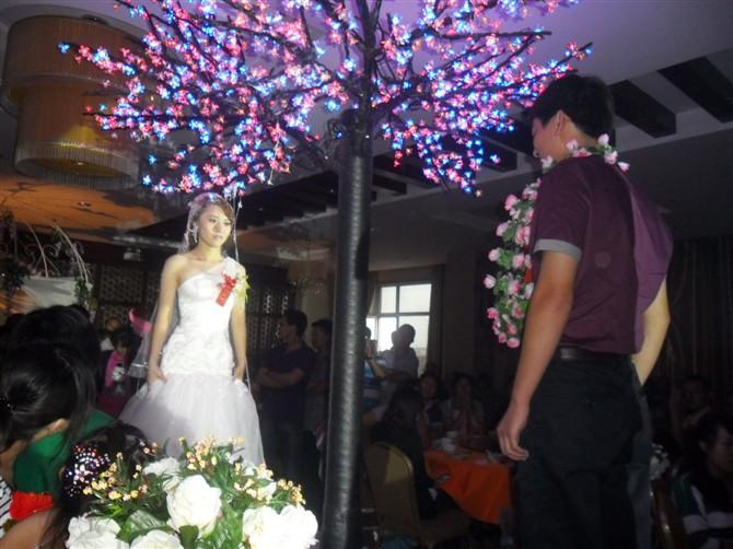 主题婚礼《五色玫瑰》仪式