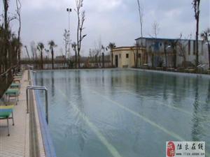温泉游泳池