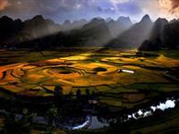 1001万峰林风景区