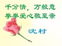 0064沈村