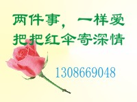 01521308669048