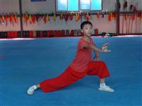 24刘伟峰 南拳(12岁)