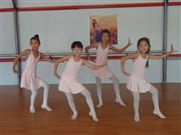 47舞蹈:三只小猪
