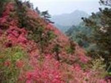 木兰云雾山