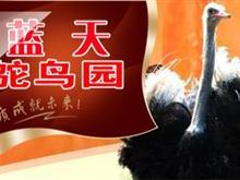 广汉蓝天鸵鸟园