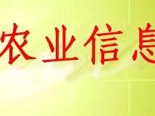 山阳农业信息网