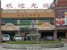 恩平蝶恋花咖啡店