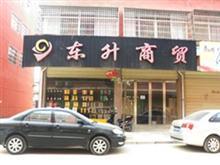 望江县东升商贸有限公司